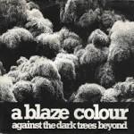 A Blaze Colour - Through With Life